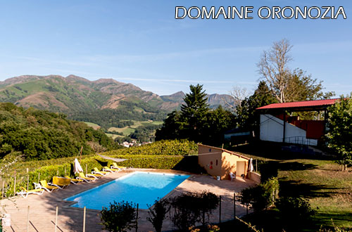 Domaine-Oronozia-swimming-pool