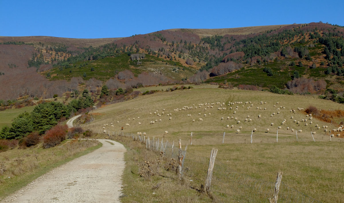 Irati-Roncesvalles-bike-route