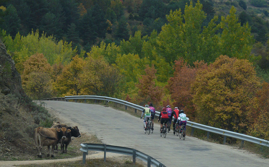 Fuentes-del-Vino-Bike-Tour-in-Soria